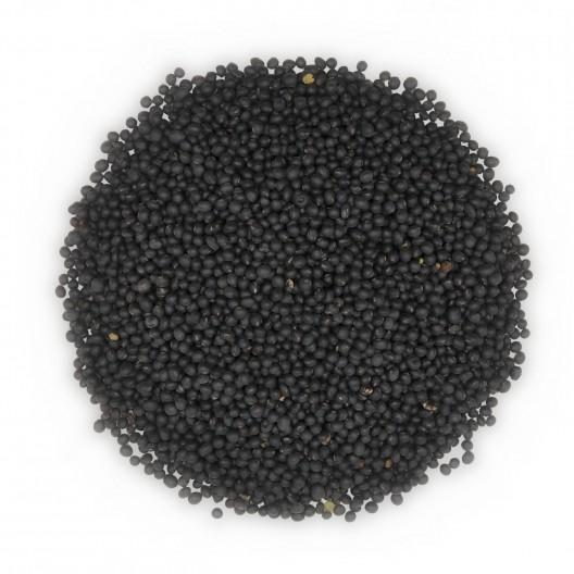 흑두(黑豆)